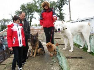 """Международная выставка собак """"КУБОК МИРА 2013"""""""