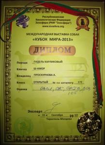 """Международная выставка собак """"КУБОК МИРА - 2013"""""""