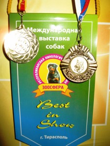 Лучший представитель породы, Best in Show Гран-При 2012